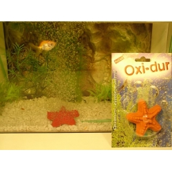 RoDeX  Piatra de aer in forma de stea de mare mica