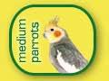 Papagali mijlocii